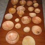A wide variety of bowls types showing the possibilities of wet (green) avocado wood