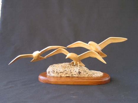 Sea Gulls 15