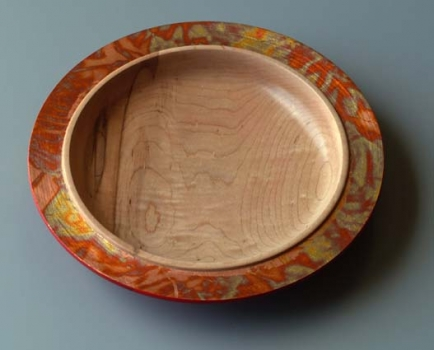 Eastern Maple with varigated copper leaf