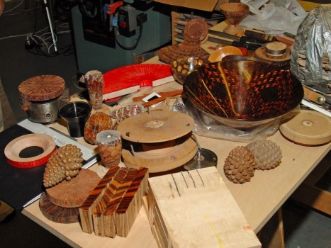 Examples and Tools 2, Monterey Pine cones