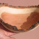 Completed rough turned bowl